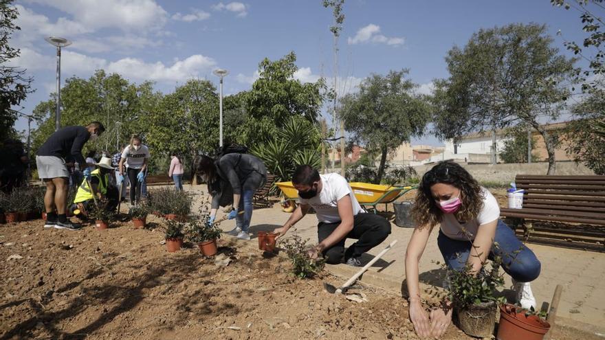 Unas 50 personas celebran el Día de Europa sembrando más de 200 plantas arbustivas en Son Fuster Nou