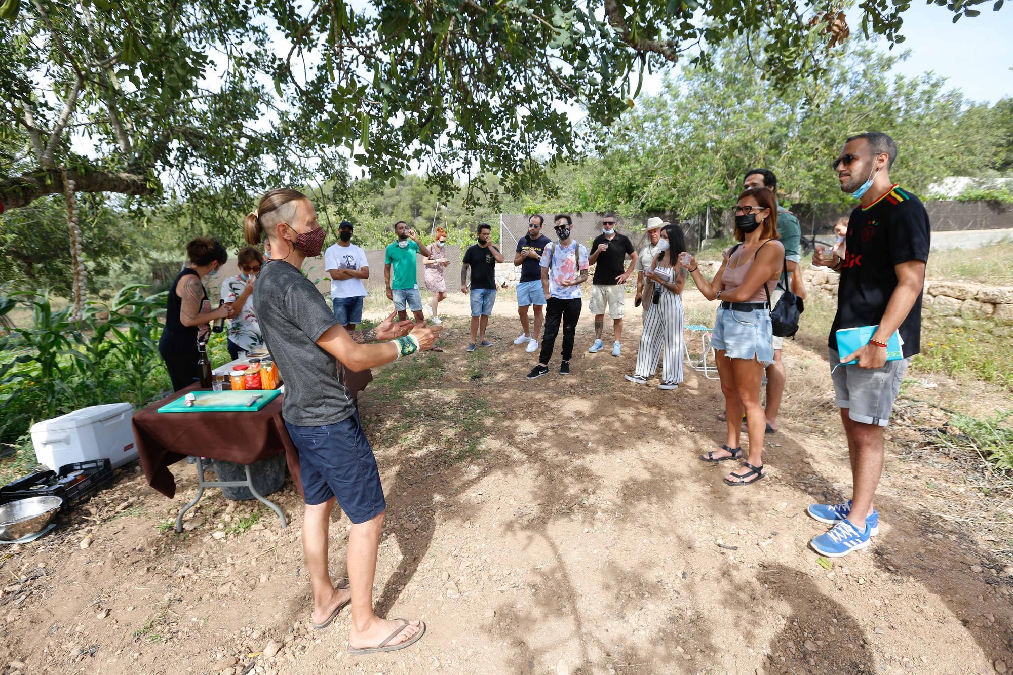 Taller de fermentación en Ibiza
