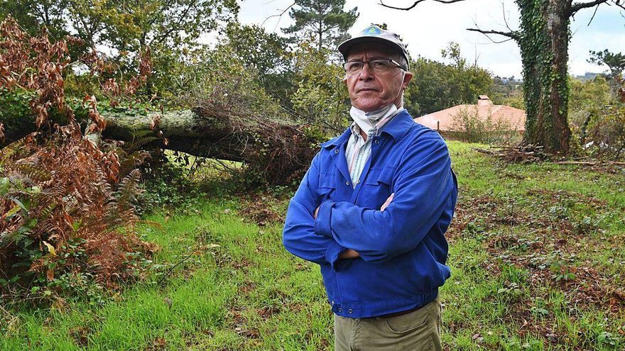 """Las amenazas de la burocracia: """"Me cayó un árbol en casa hace dos años y va a caer otro"""""""