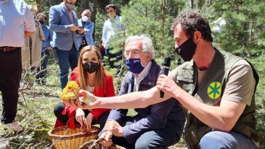 Nace MicoAragón para ser el órgano de referencia de los recursos micológicos en la comunidad