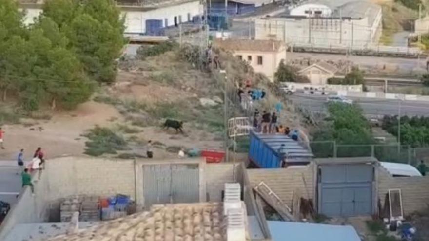 La Generalitat controlará los corrales móviles para evitar que se escapen los toros