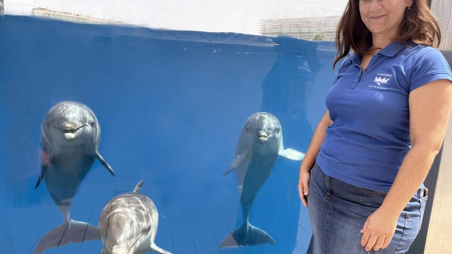 Un estudio investiga las proteínas presentes en el semen de los delfines