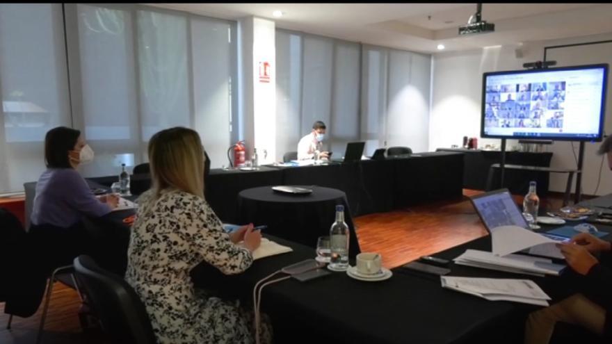 Reunión del Consejo Canario de Turismo (14/05/2021)