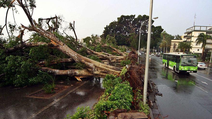 15 años del 'Delta': el primer golpe del cambio climático a Canarias