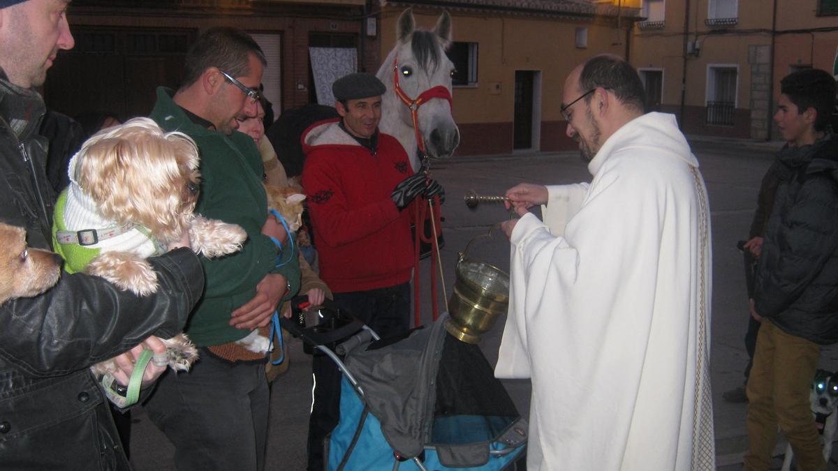 Celebración de San Antón en Toro en ejercicios pasados, antes de la pandemia.