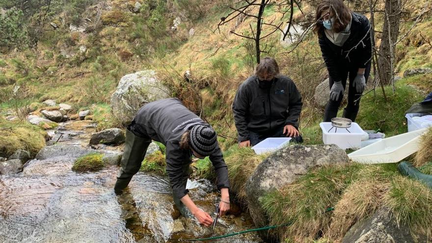 Un tros de plàstic pot alterar l'ecosistema d'un riu del Pirineu?
