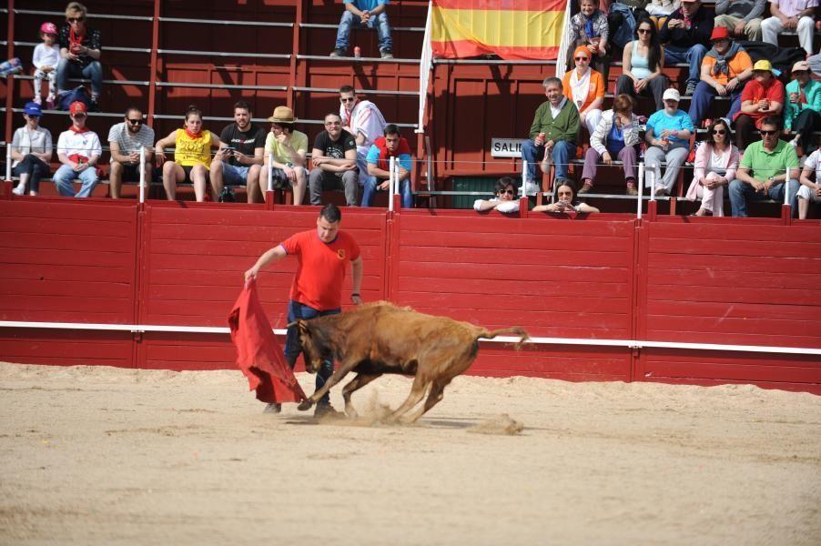 Becerrada, encierros y vaca de la sangría