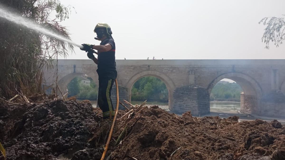 Bomberos sofocando el fuego en los pastos cercanos de la Torre de la Calahorra.