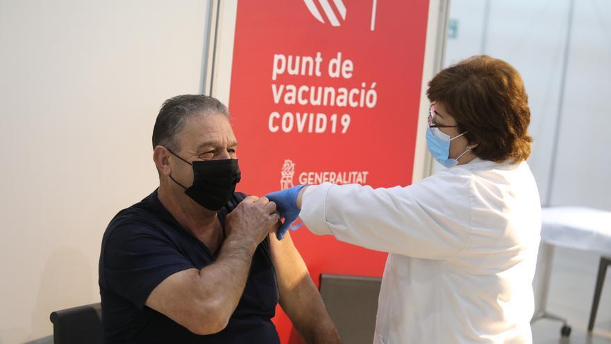 Un tercio de la población de Elche quedará inmunizada contra el virus esta semana