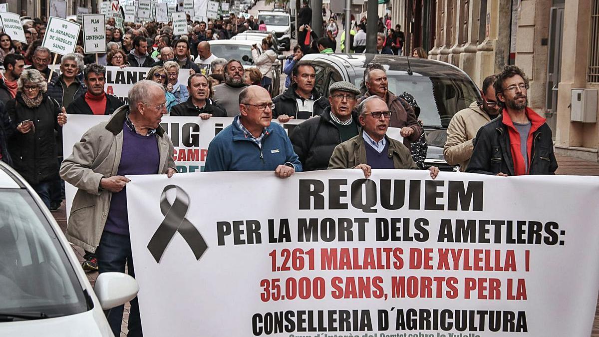 Manifestación contra el arranque de almendros celebrada en Cocentaina el año pasado.