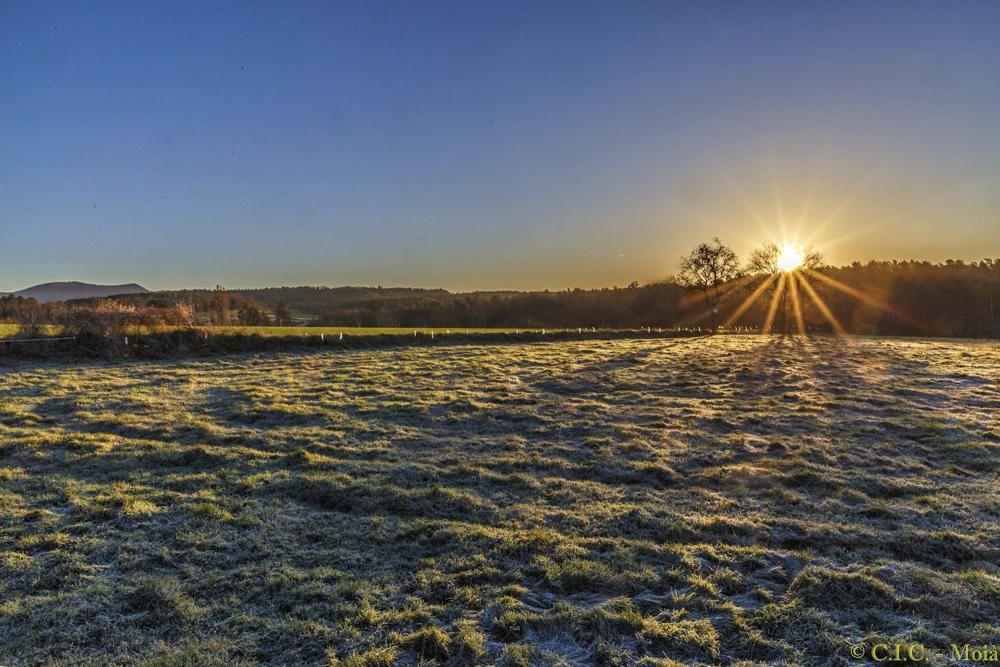 Sortida del sol. Començament del dia a Moià dimecres passat. Com podem observar, el sol començava a treure el cap, deixava aquests rajos tan macats i donava escalfor al camp per desfer la gebrada.
