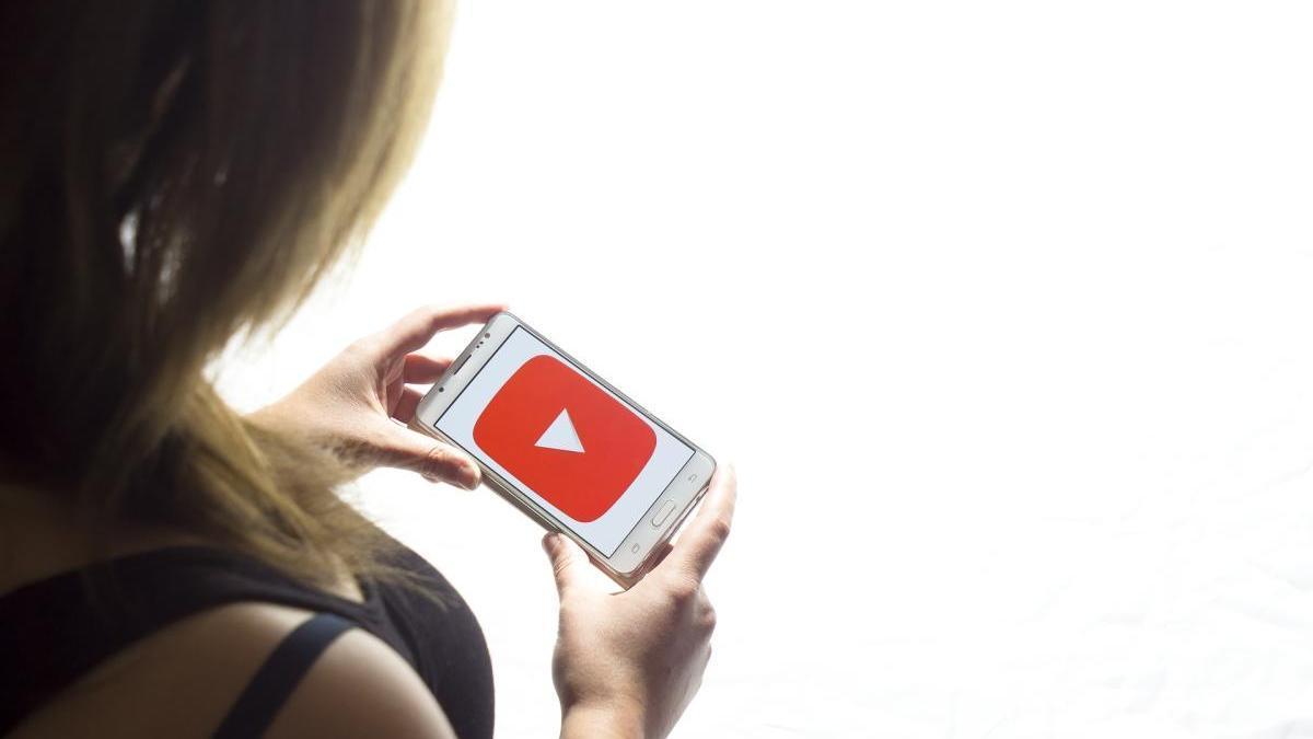 El youtuber s'ha infiltrat en alguna videoconferència d'un centre educatiu.