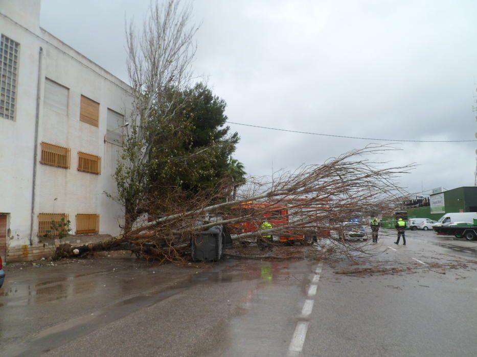 El temporal deja hasta 88 litros en las primeras horas en el norte de la provincia