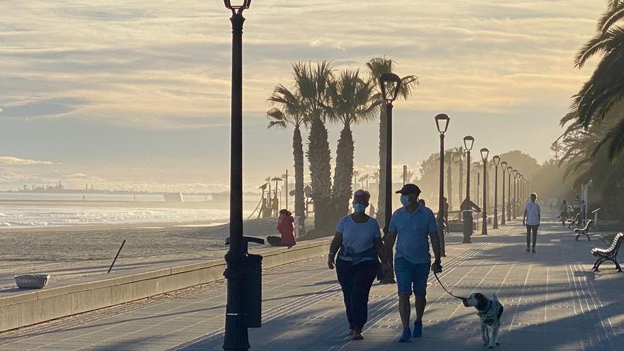 Los perros podrán entrar a todas las playas de Benicàssim a partir de noviembre