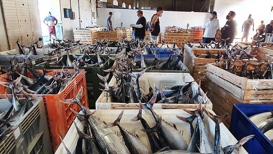 La pesca capea el temporal de la pandemia