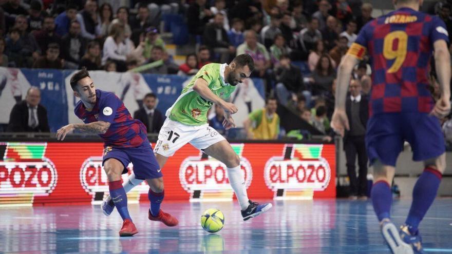 El Palma Futsal se medirá al Barcelona en su segundo test de pretemporada