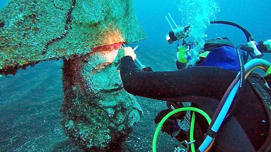 Trasladarán los enanos submarinos para que puedan recibir visitas