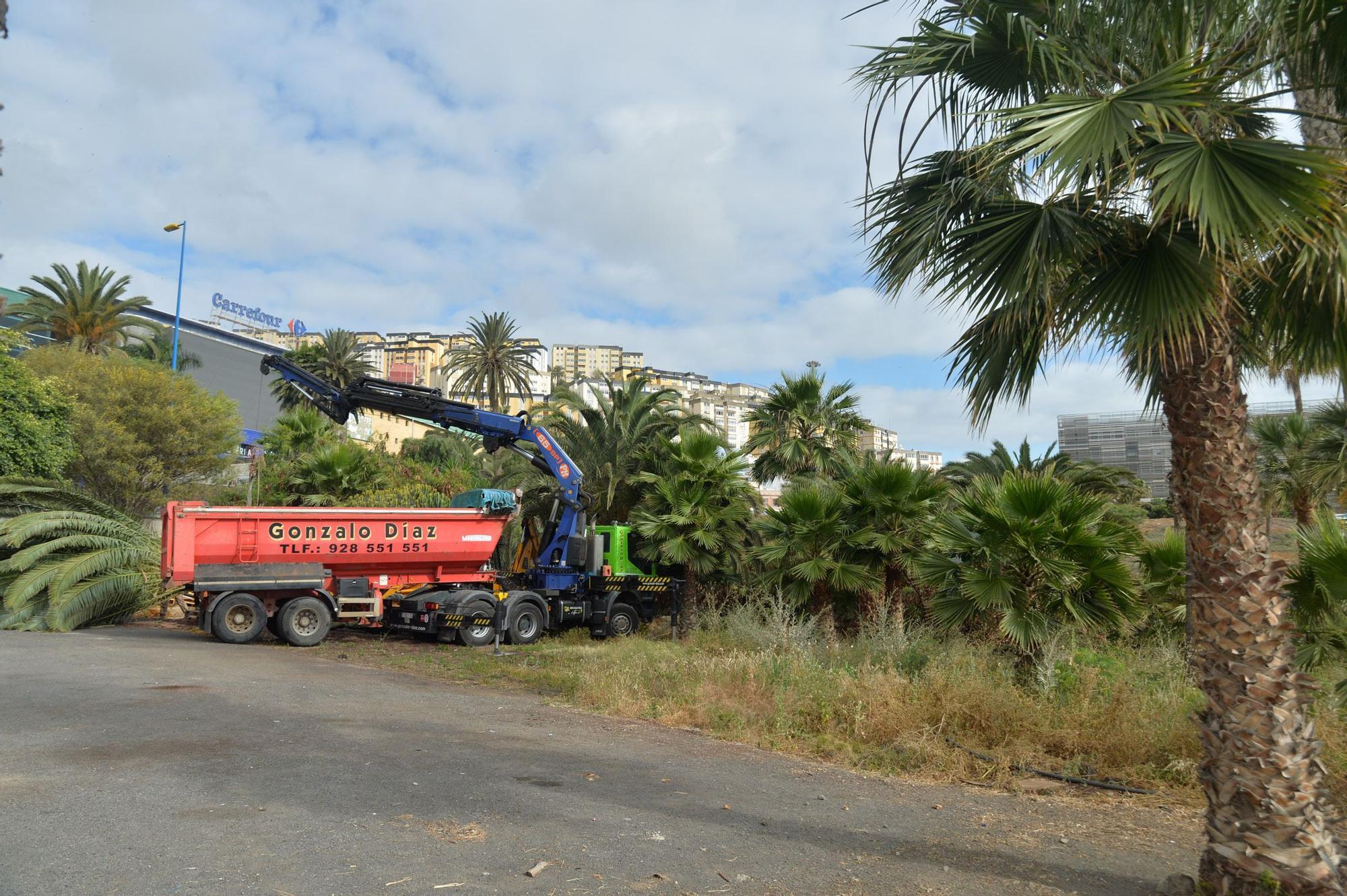 Inicio de las obras para la nueva estación de guaguas en Hoya de La Plata