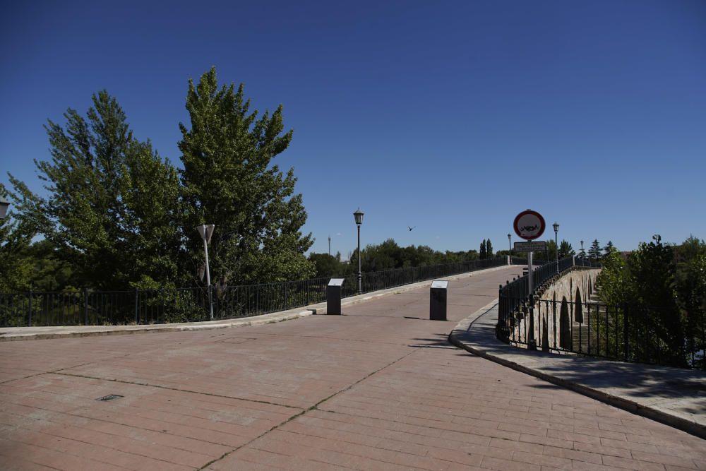 Zamora sin San Pedro
