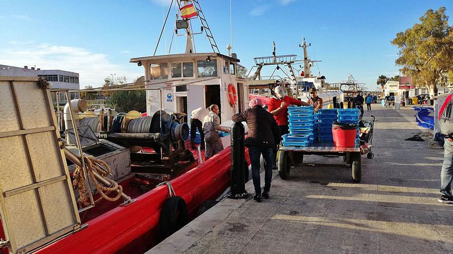 Las capturas de los pescadores de Cullera suben un 14,6 % y generan 3,4 millones de euros