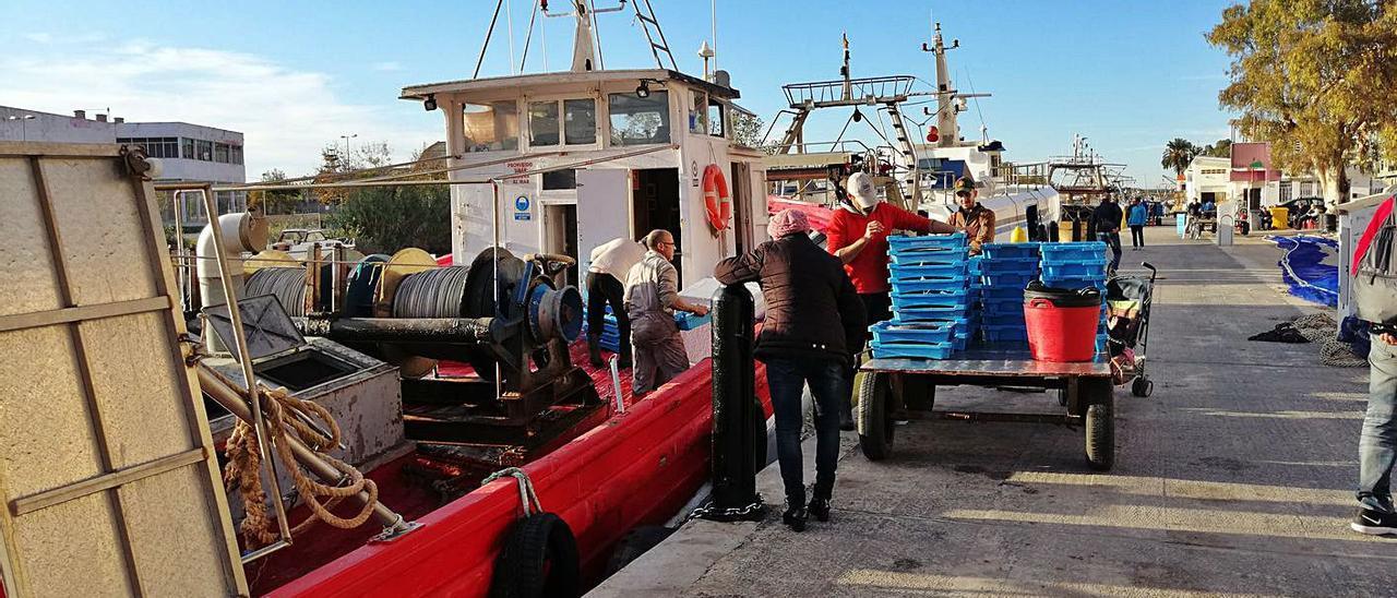 Pescadores de Cullera descargan al llegar al puerto en una imagen de archivo. | JOAN GIMENO