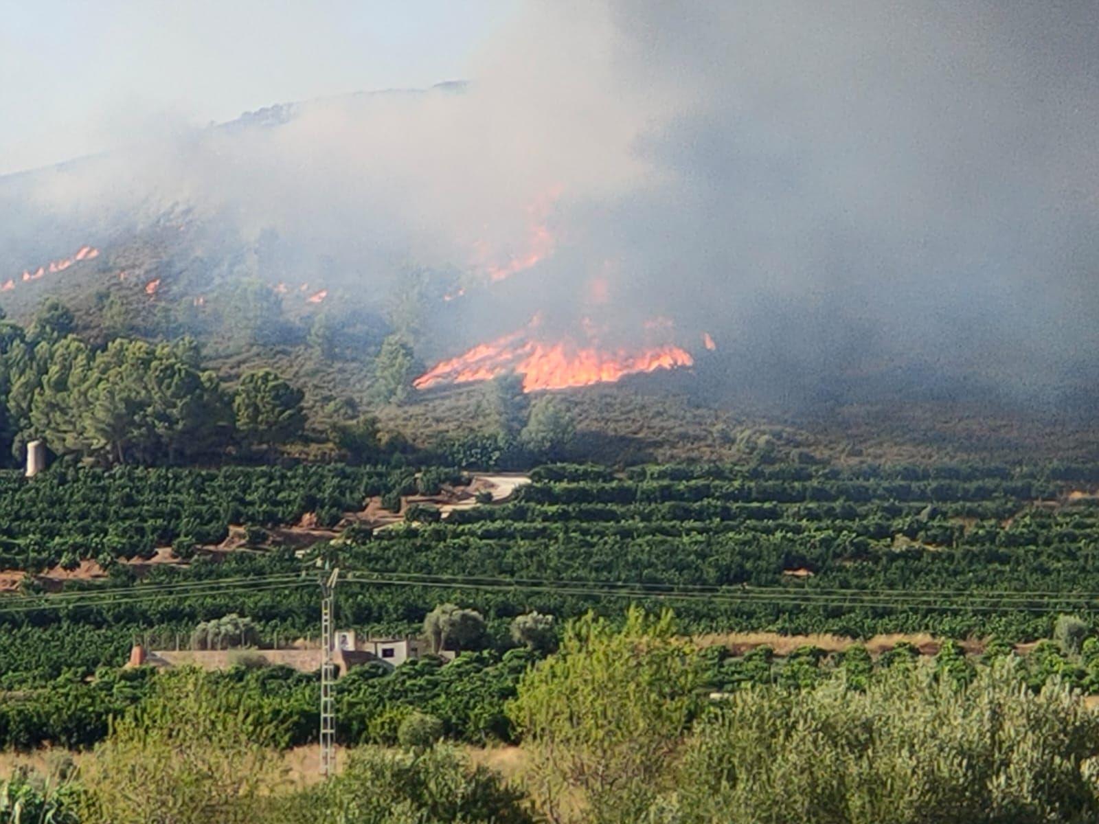 El incendio de Rafelguaraf, en imágenes
