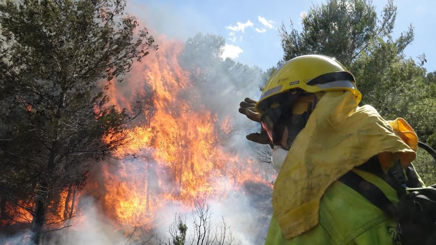 Se declara un incendio en la localidad alicantina de El Pinós