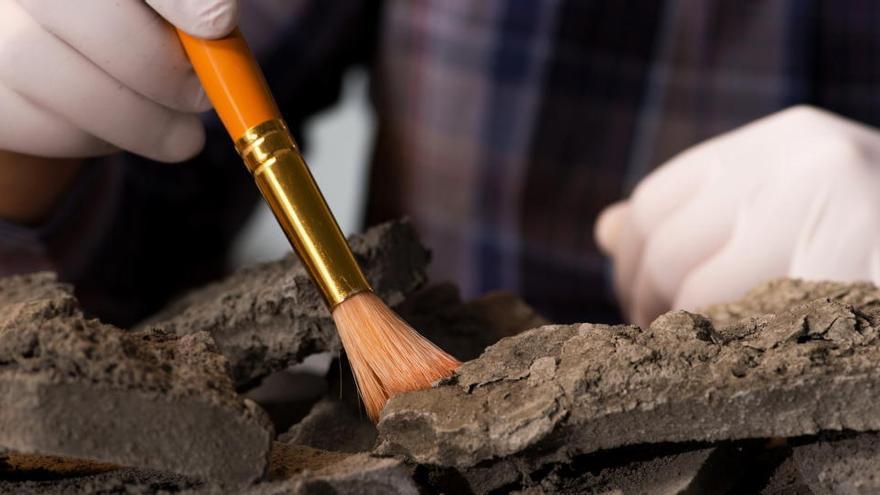 Una excavación arqueológica.