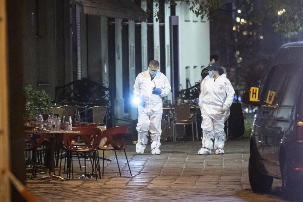 At least three people dead in Vienna terror attack
