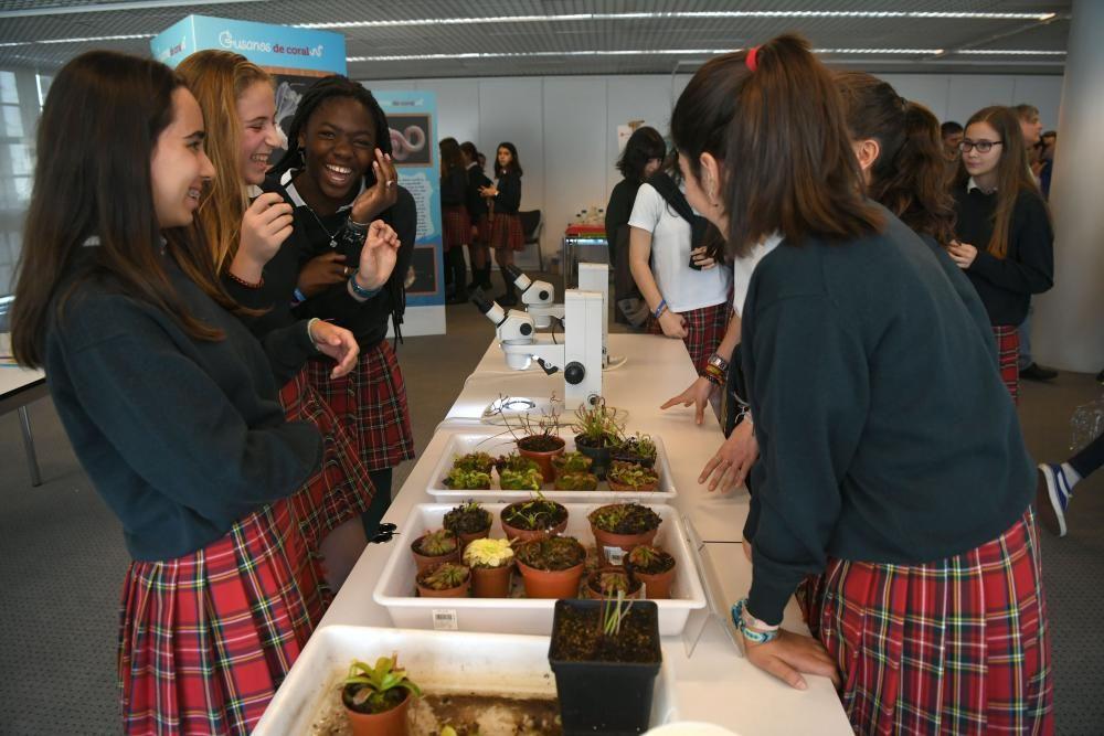 Acitividades científicas para escolares en la Fundación Barrié