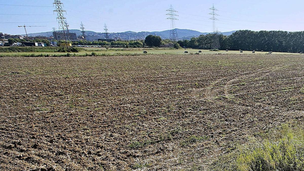 Els terrenys de Salt on s'ubicarà el nou Trueta. | MARC MARTÍ