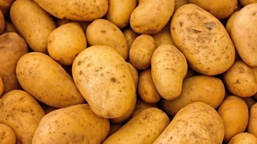 La rebelión de las patatas: así se encontraron una cocina después de tres meses fuera de casa