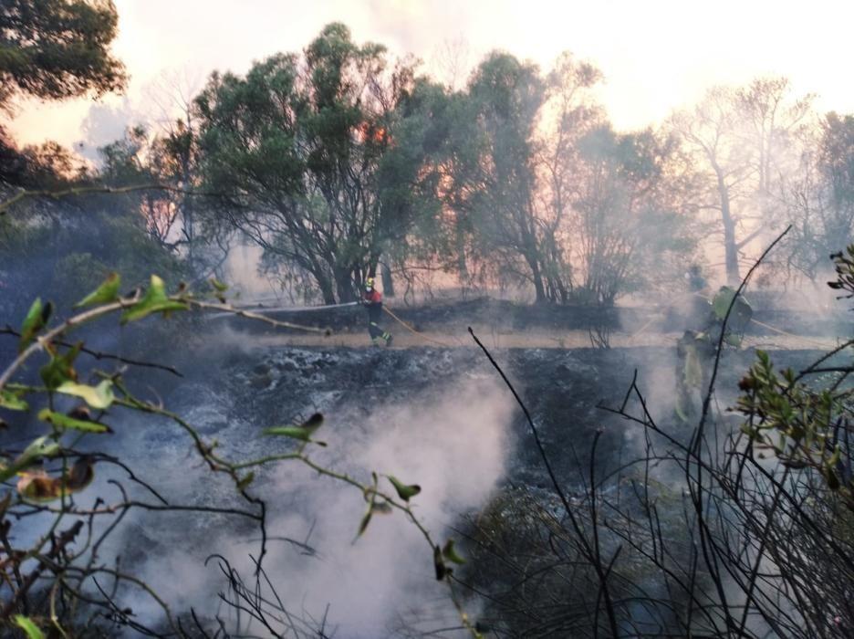 Incendio en la Vall del Montgó de Xàbia