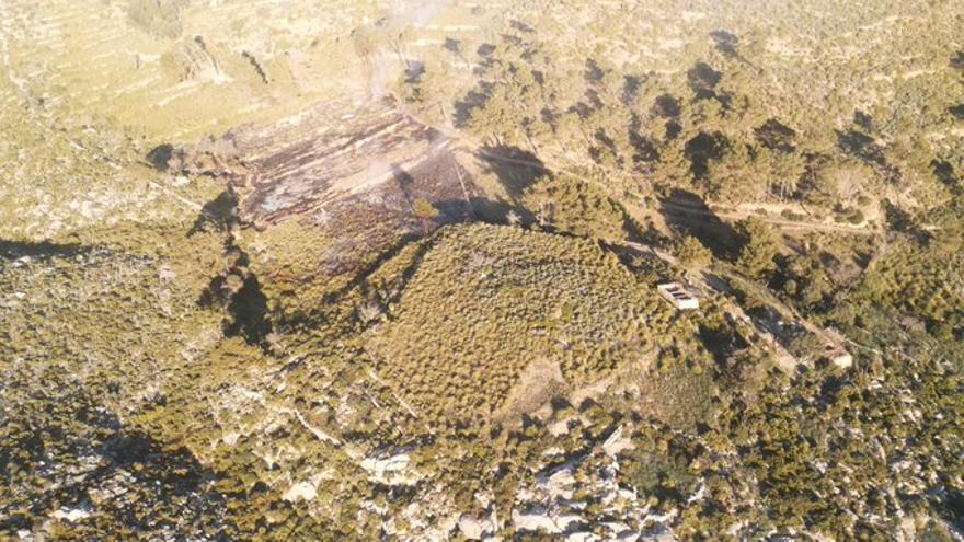 Medios aéreos y terrestres combaten un incendio forestal en Andratx