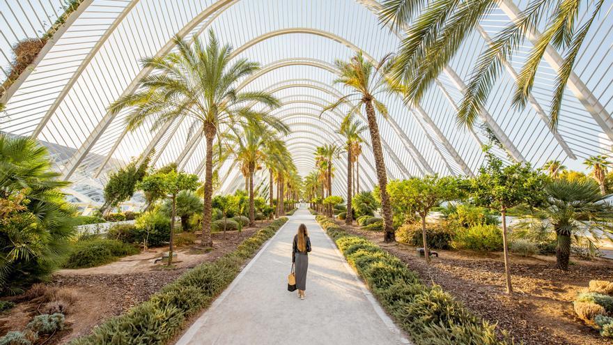 Qué ver y visitar en Valencia durante las vacaciones de verano