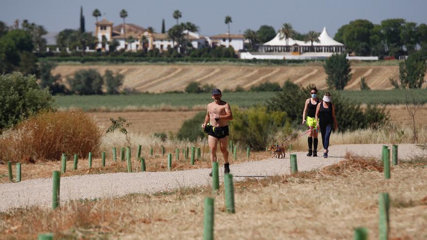 Las obras de la segunda fase del cinturón verde de Córdoba empezarán en octubre