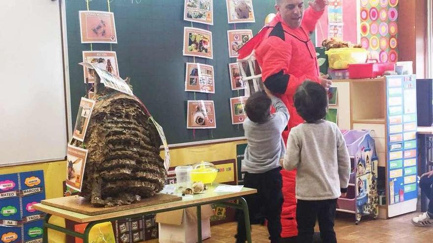 Emergencias de Cambre capturó más de mil reinas de avispa velutina en mes y medio
