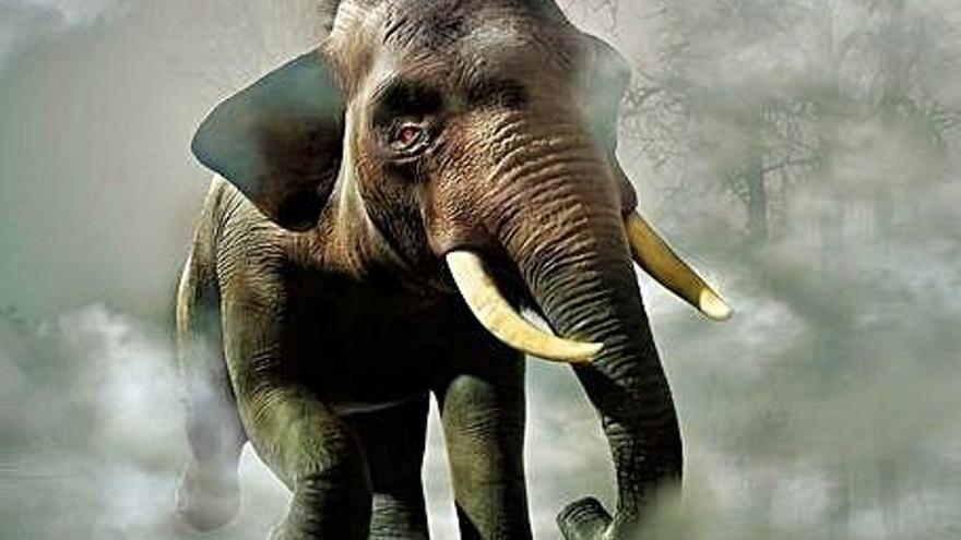 Piñas con explosivos para elefantes