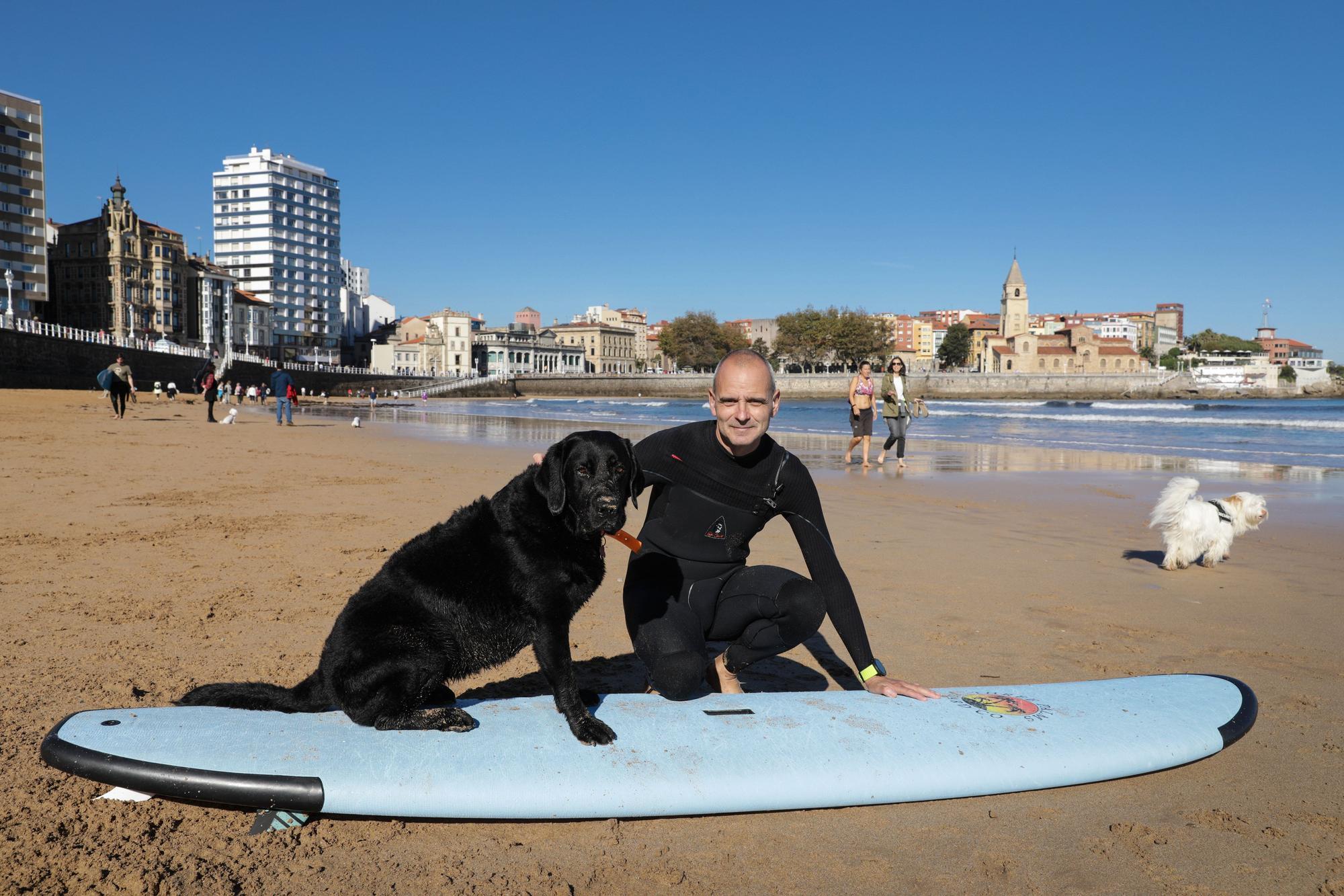 """""""Kiara"""", la perra surfera de San Lorenzo"""