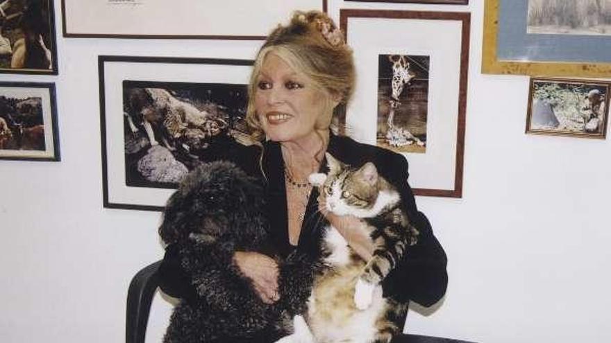 """Brigitte Bardot pide a Macron un """"milagro"""" de Navidad para los animales"""