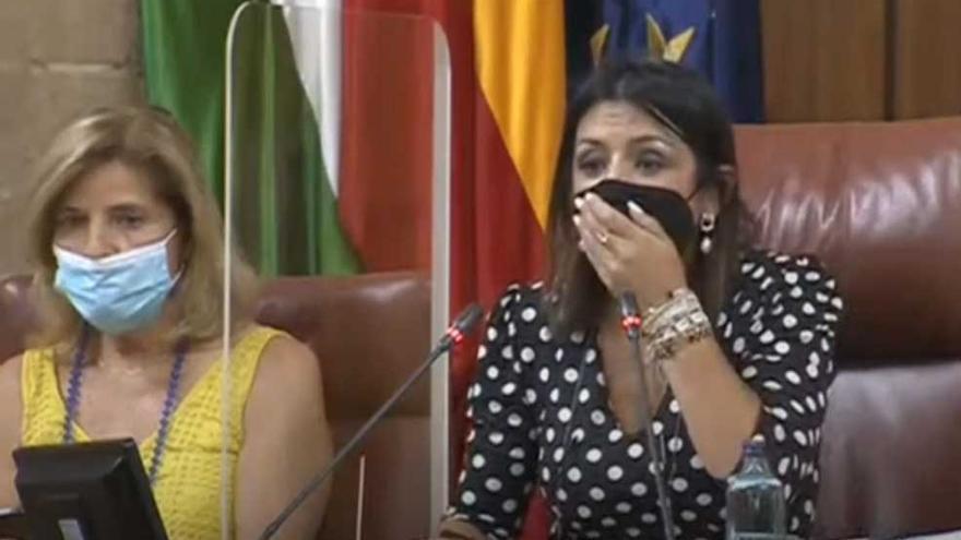 Una rata se cuela en el Parlamento andaluz