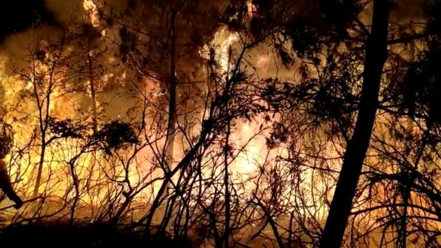 El Distrito Forestal XVI afrontará la época de alto riesgo de incendios con 125 trabajadores