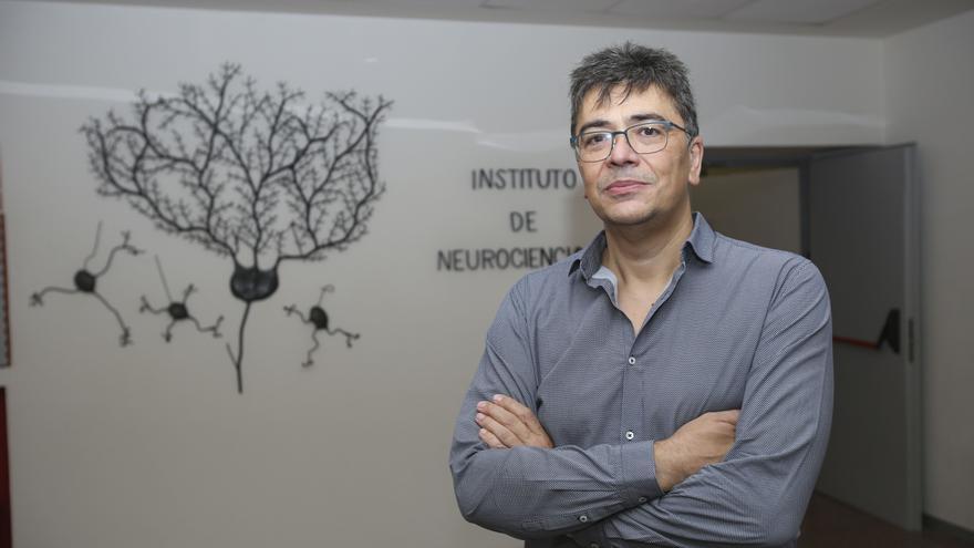 Ángel Barco será el nuevo director del Instituto de Neurociencias