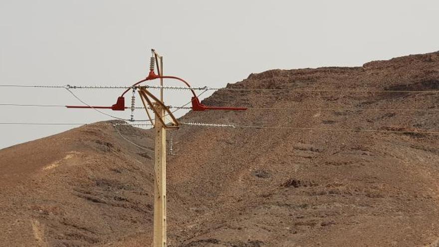 Endesa instala medidas de aislamiento en las torres para proteger a la colonia de guirres