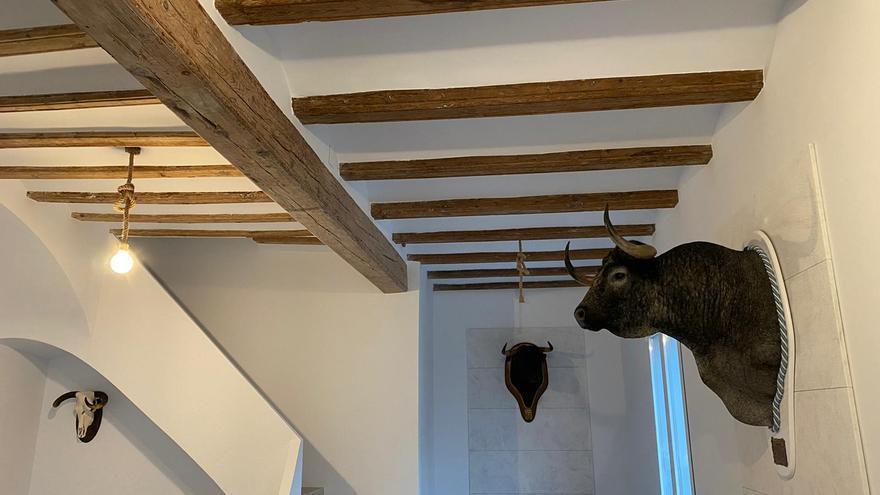 Inician el montaje del nuevo Museo del Bou en Borriana