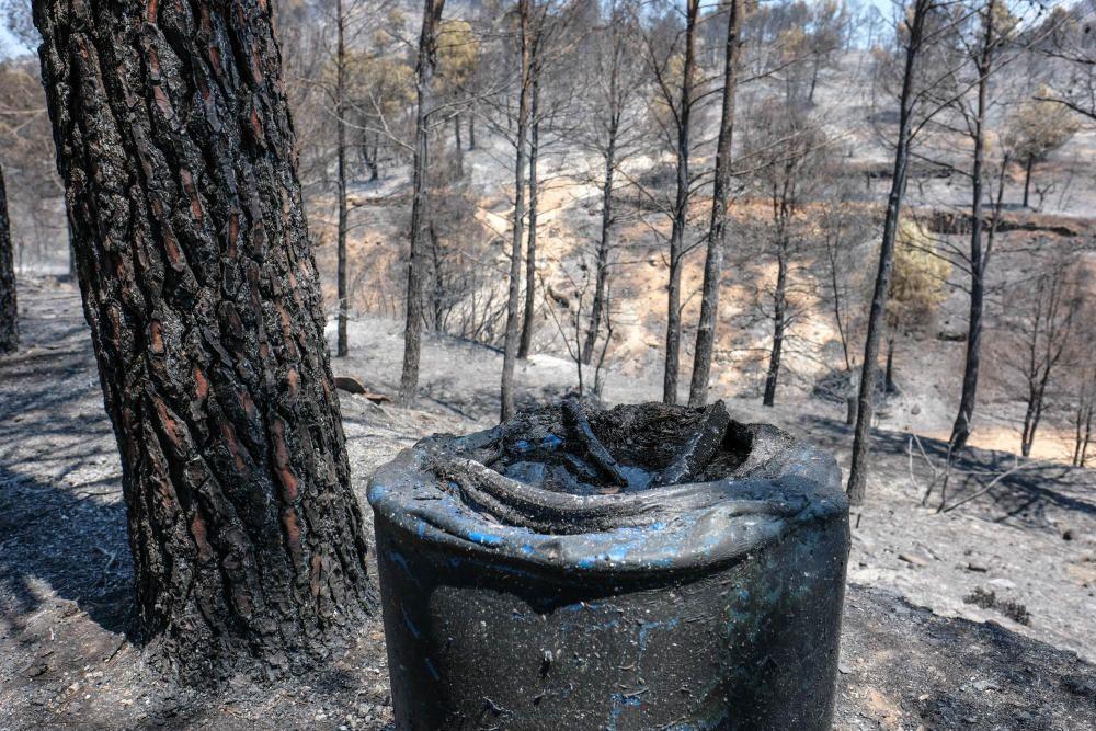Así ha quedado la zona tras el incendio.