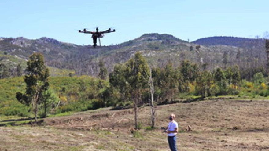 """Los drones reforestan los montes quemados de Borela a toque de """"big data"""""""