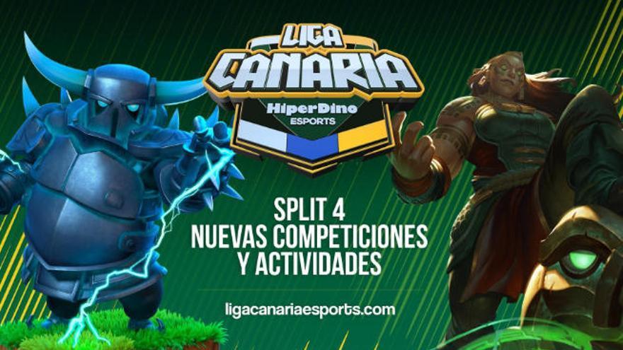 La 'Liga Canaria HiperDino' vuelve a la carga desde hoy con diversas competiciones