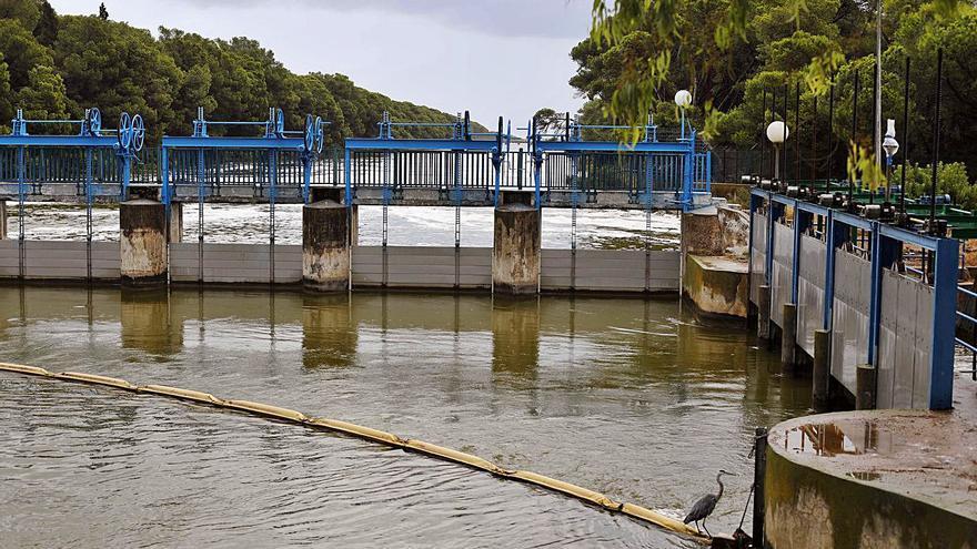 La subida del nivel del agua de l'Albufera obliga a abrir las compuertas por el día