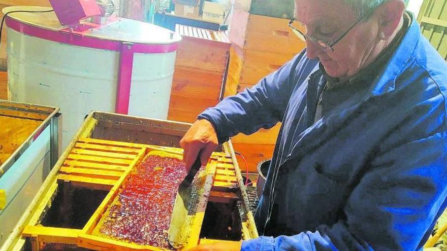 """Los apicultores piden que se consuma miel local para salvar la """"pobre"""" temporada"""